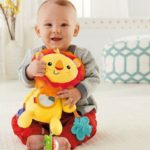 Fisher-Price Activity Plush Rattle