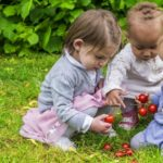Top Choking Hazards For Babies and Toddlers
