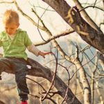 Why climbing a tree is better than watching a screen…